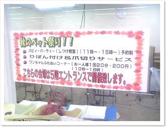 DCF_0017